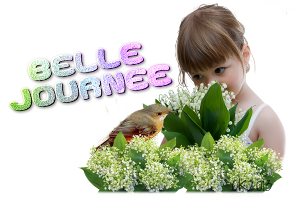 BELLE JOURNEE 2